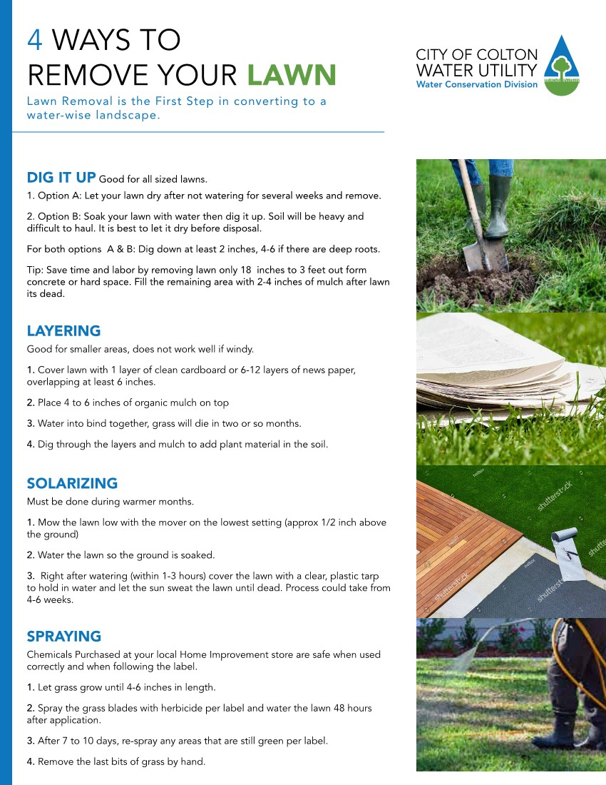 Turf removal flyer